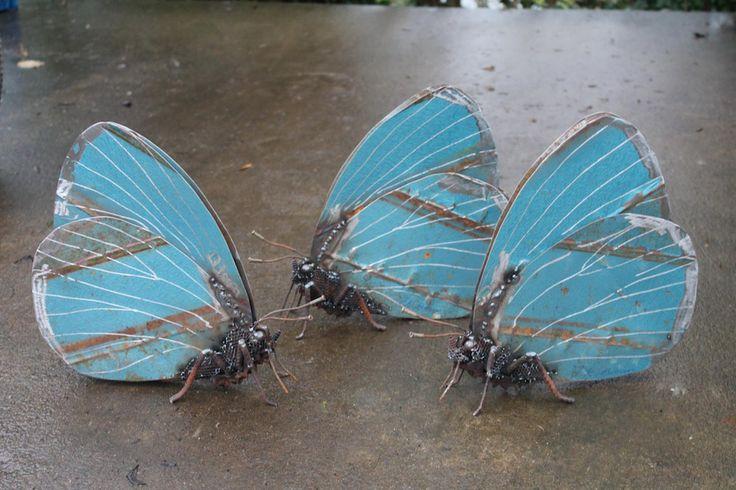 Les Insectes de Métal de John Brown