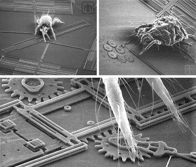 bugs on chips microelectromechanical systems mems are almost nano