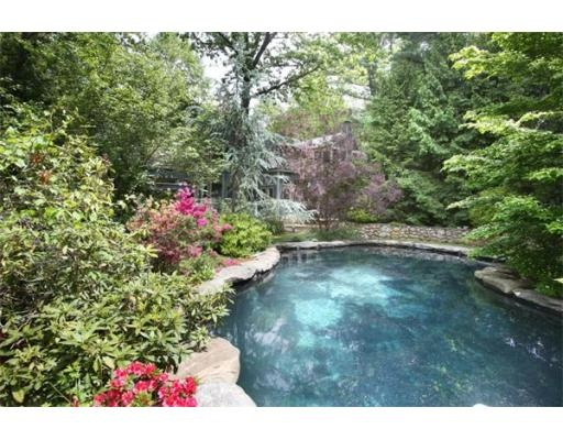 Love The Natural Looking Pool Great Idea Trim Back The Greens Just A Bit And It 39 S A Keeper