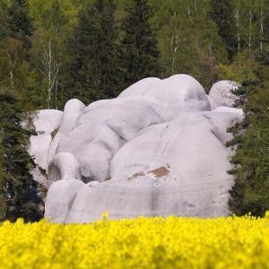 Sloní kameny, autor: Milan Drahoňovský