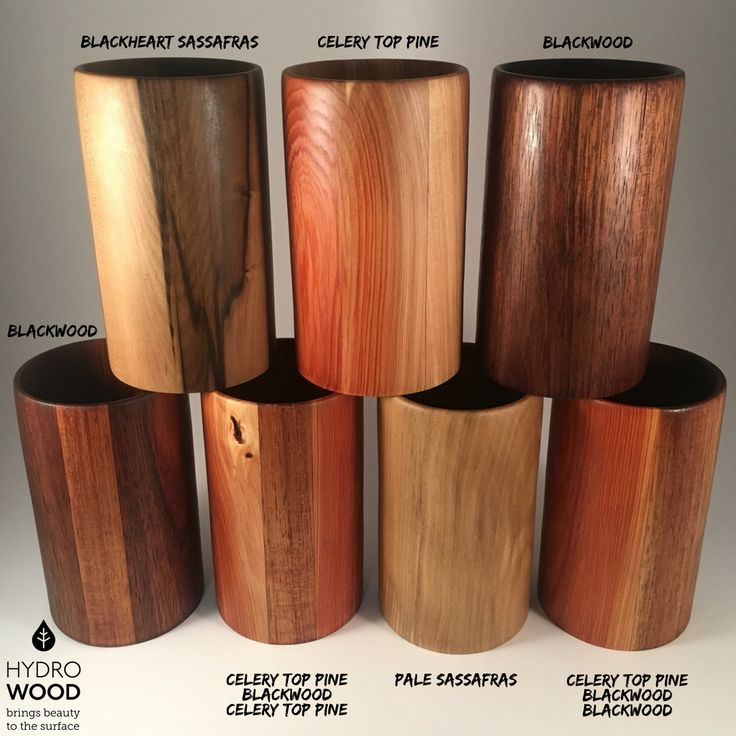 Wooden Stubby Holders made using Hydrowood rediscovered Tasmanian timbers