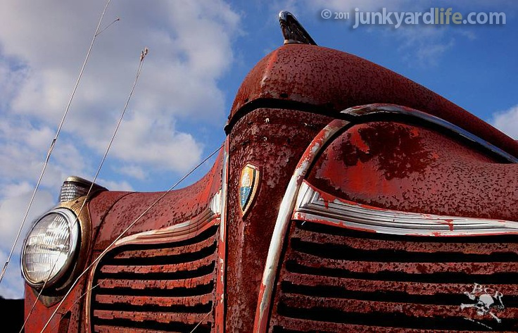 Junkyard Life: Classic Cars, Muscle Cars, Barn finds, Hot rods and part news: Readers' junk: Willys wagons, Edsels found on Pennsylvania junkyard crawl
