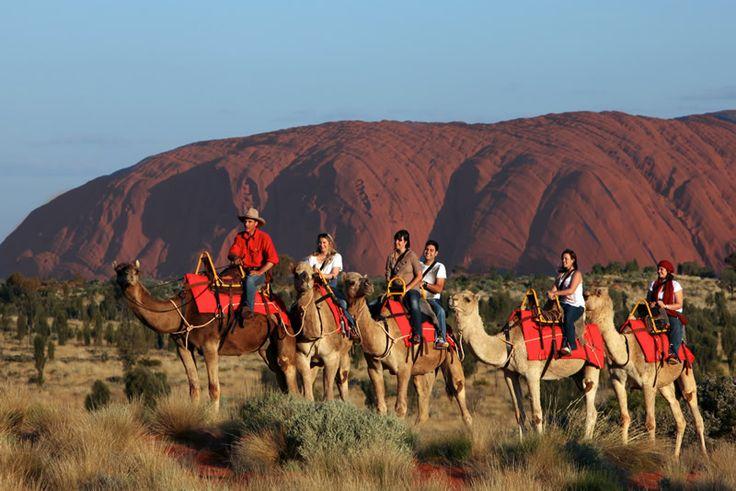 Camel Back Uluru Sunset Tours Australia Uluru