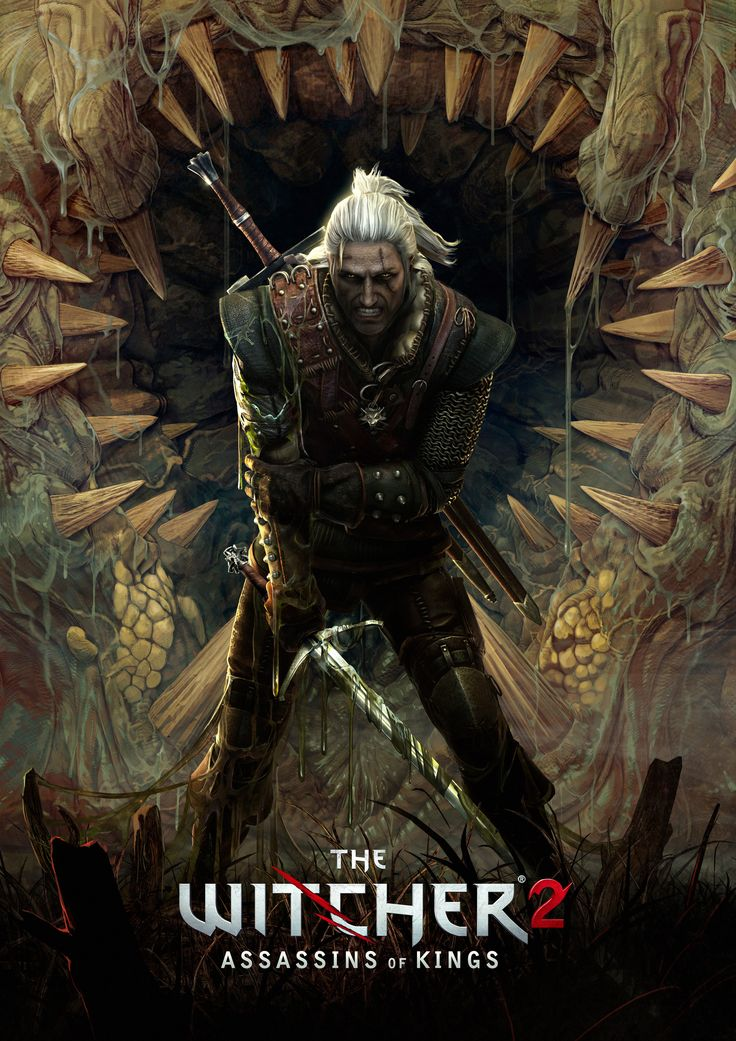 Image of The Witcher 2: Assassins of Kings (Things have taken a turn.) - Giant Bomb