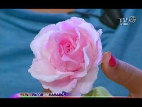 Ida Riccardi in... Porcellana fredda, l'impasto perfetto per i suoi fiori. - YouTube