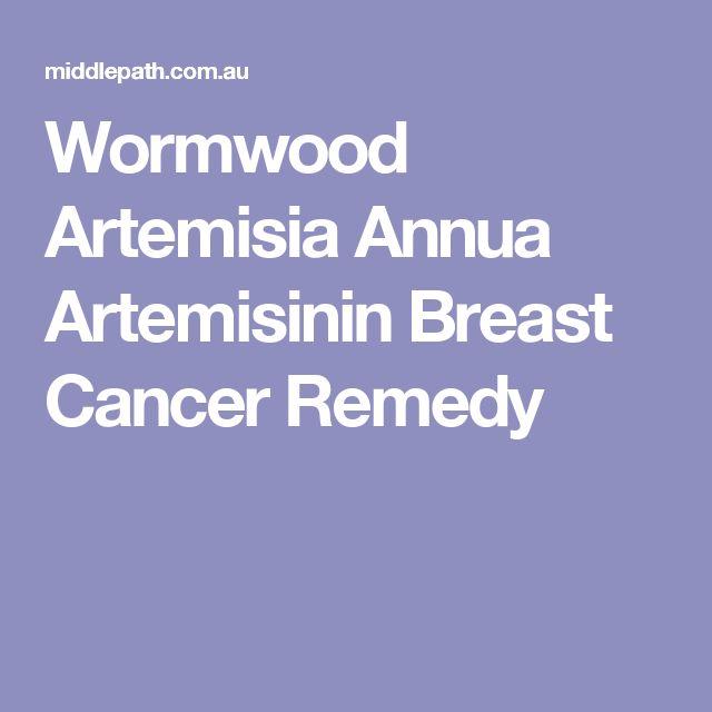 Wormwood Artemisia Annua Artemisinin Breast Cancer Remedy