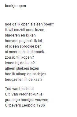 Ted van Liedhout - Boekje open (1986)