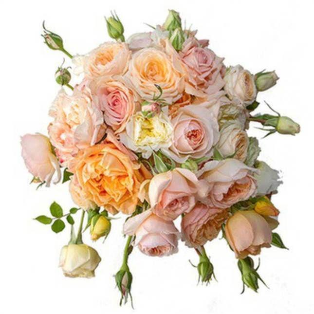 Här är en bild av Sofias brudbukett som publicerades på Kungahusets hemsida.Läs mer om buketten här