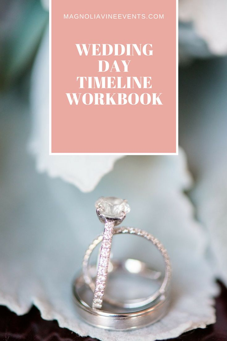wedding planning checklist spreadsheet free%0A The timeline workbook is perfect for the bride looking to create a  comprehensive timeline for her wedding day     pages full of advise   questions  templates