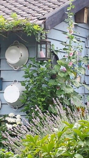 I could use these ideas for the side of my shipping container/garden shed to help it fit into the garden