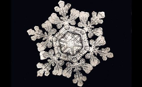 """""""No two snowflakes are alike"""" was coined by Wilson Bentley, who pioneered the technique called photomicrography in order to capture a single flake. Learn more with """"Science Friday."""""""