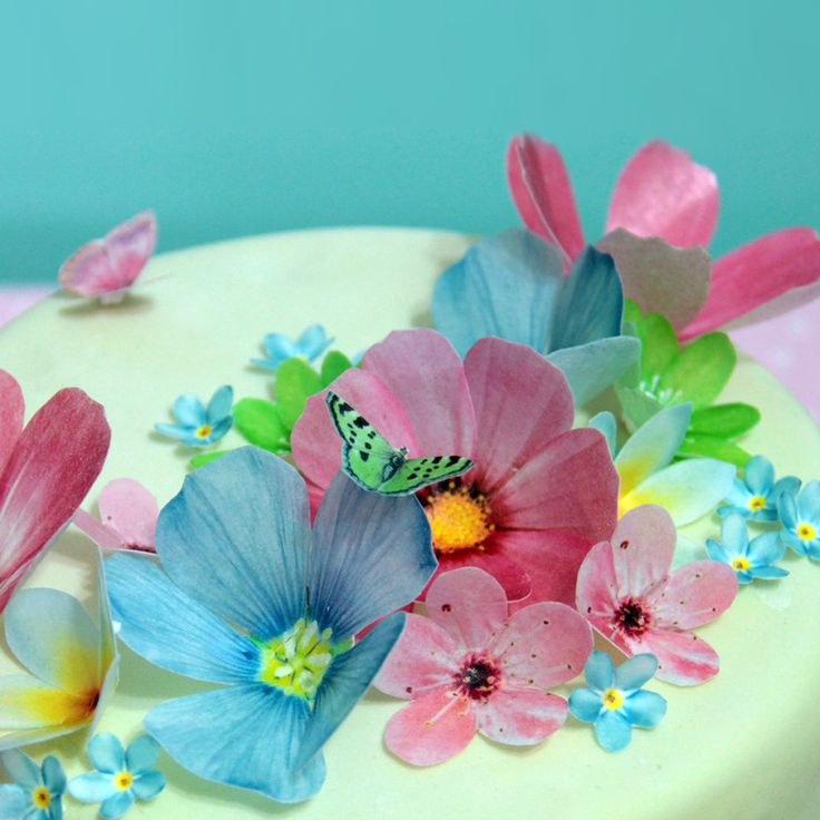 Sweet Whimsy Edible Large Flowers Images