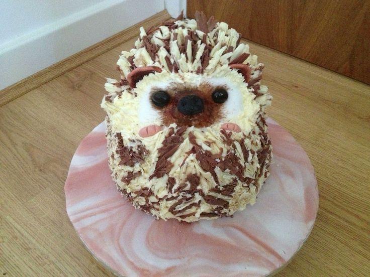 Hedgehog cake. Love the chocolate spines!
