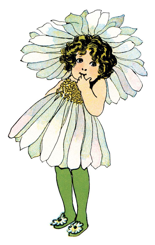 Daisy Flower Child by Elizabeth Gordon Daisy flower