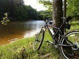 Fairfax Station Trails - Best Fairfax Station camping, hiking & biking trails | AllTrails.com