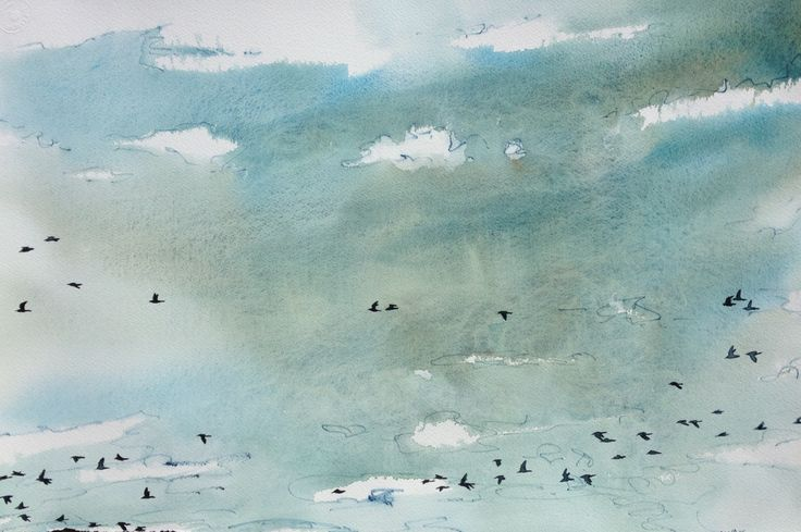 Blackbirds Fly Series