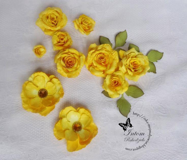 Mój mały świat: Róże w nowych kolorkach :)