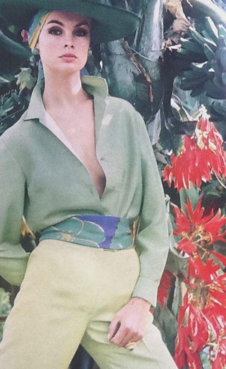 Jean Shrimpton Vogue 1964