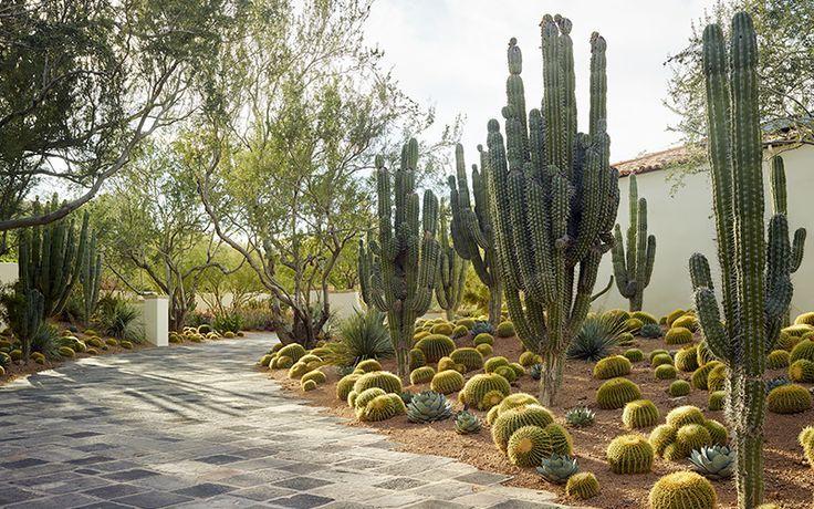 Garden Design Magazine Early Spring 2016 Garden Design Xerojardineria Design Early Garde Garden Design Magazine Garden Design Outdoor Gardens Design