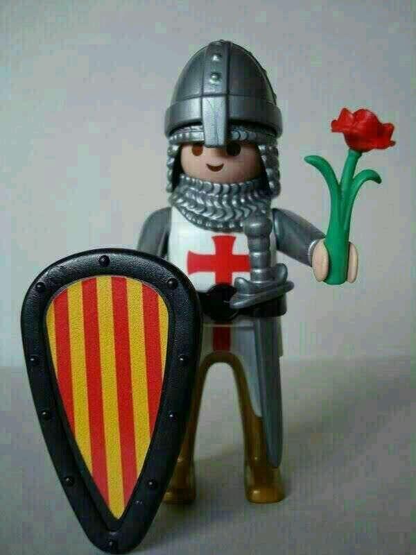 El Sant Jordi més click!