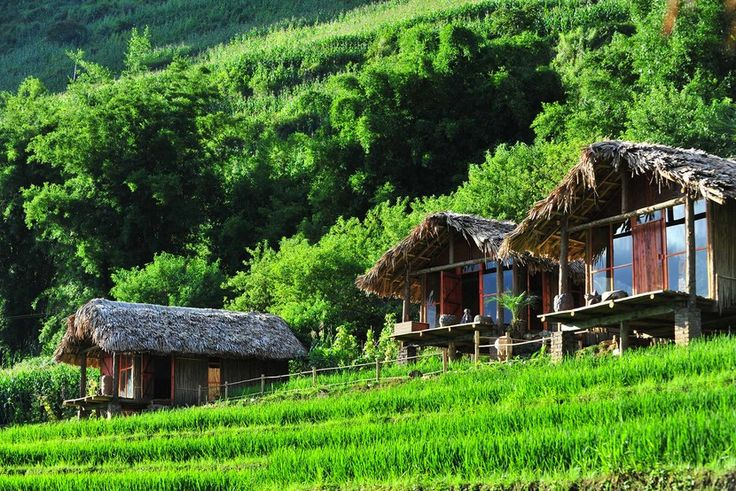 The most beautiful homestays in Sapa - Ever wonder where to stay for your Vietnam tour package in Sapa? Don't miss out on this blog on the most beautiful...