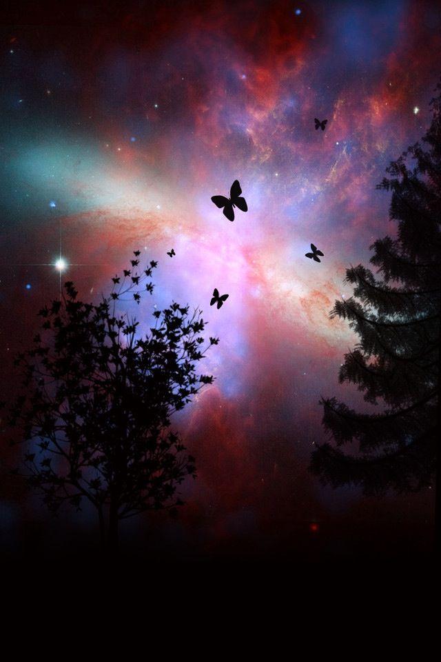Butterflies night sky | Good night friends, Good night sweet dreams, Good night greetings