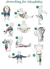Flexibility Stretches Check List