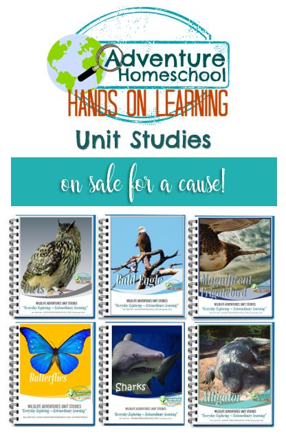 Current sale goes to benefit homeschool mom - Kath…