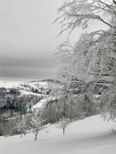 Krajina Bílých Karpat Vice na: http://www.gastrovylety.cz/kam-vyletslovacko-bile-karpaty-okoli-vyskovce/