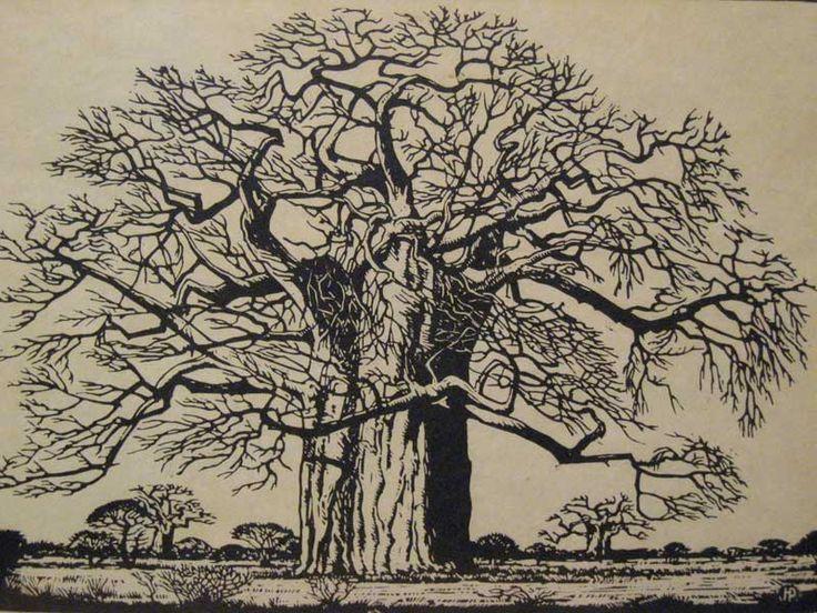 jacob hendrik pierneef (1886 - 1957) : litohgraphic linocut : baobab