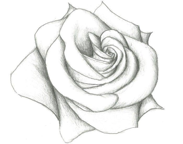 1001 Modeles Et Conseils Pour Apprendre Comment Dessiner Une Rose Dessin Rose Comment Dessiner Une Rose Fleurs Faciles A Dessiner