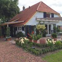 Dutch Berry Garden - WWOOF the Netherlands