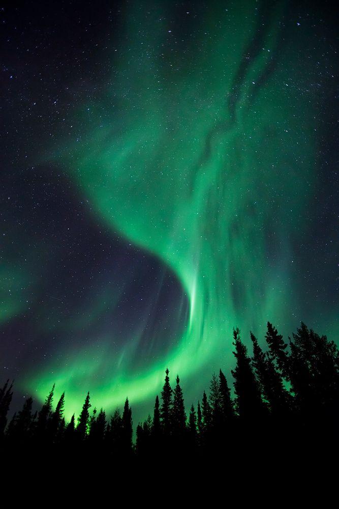 Northern Lights @Gail Wheltle