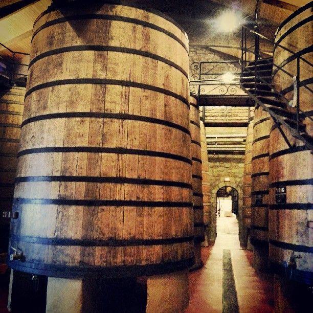 """@Jose Gutierrez Gutierrez Gutierrez Gutierrez R Camara Winetastelovers's photo: """"Muga, bodega centenaria en #Haro, Rioja Alta. #turismo #turism #enoturismo #experience #winetours #winetastelovers #winelover #Rioja #gf_spain #gf_daily #gastronomía #gang_family #LaRioja #Spain #vino #viaje #travel #tapas #instawine #gastronomy #viajar #instapic #photooftheday #instagood #greatesttravels #igers #picoftheday"""""""