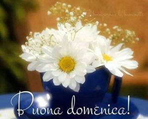 Buona Domenica a tutti un bacione! ~ Il Magico Mondo dei Sogni