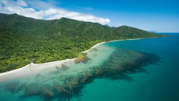Queensland bucket list | 30. Walk the beach where the rainforest meets the reef at Cape Tribulation.