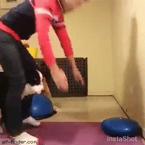 lol....watch the sheppie grab a pinch of the mat with his teeth... smart puppy......Gif Finder – Find and Share funny animated gifs