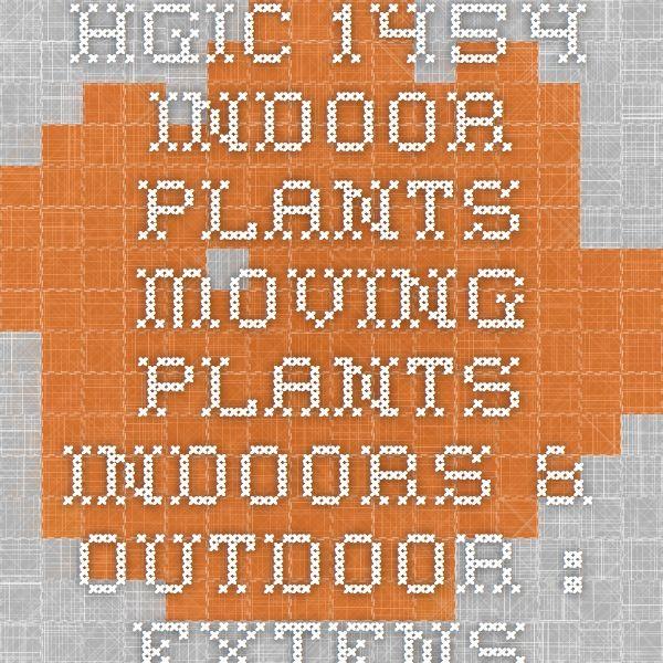 HGIC 1454 Indoor Plants - Moving Plants Indoors & Outdoor : Extension : Clemson University : South Carolina