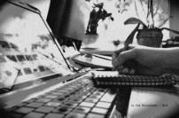 by ELK Media | Photography * Vertalingen Ned>Hu * WP-Websites * WP-Blogs * Copywriting