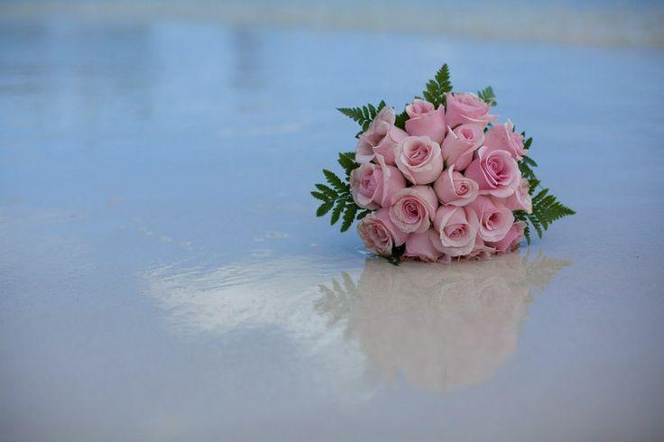 Свадьба в Доминикане (Weddings in the Dominican Republic); Розы розового цвета (Pink color roses); Розы на берегу моря (Roses on the beach)