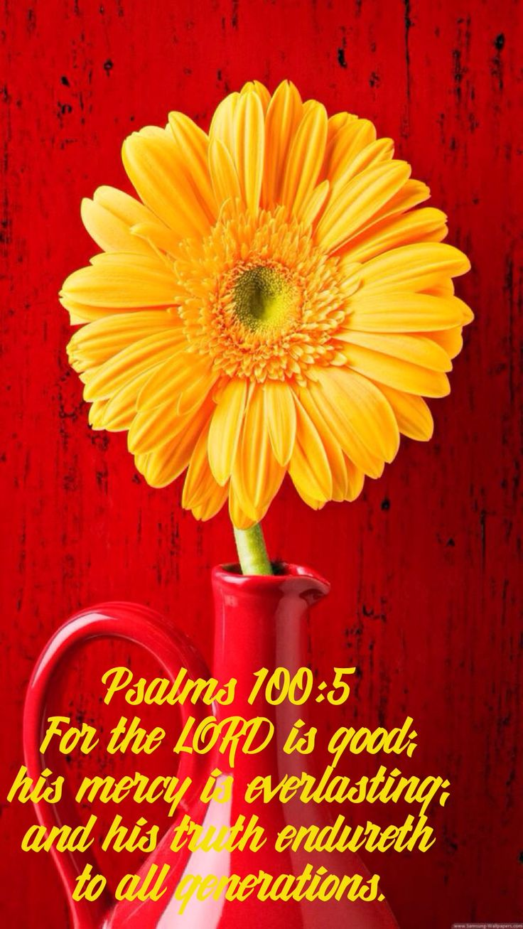 """Psalms 100:5 """"For the LORD is good; his mercy is everlasting; and his truth endureth to all generations."""""""