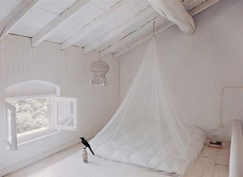 White dreams beneath the eaves
