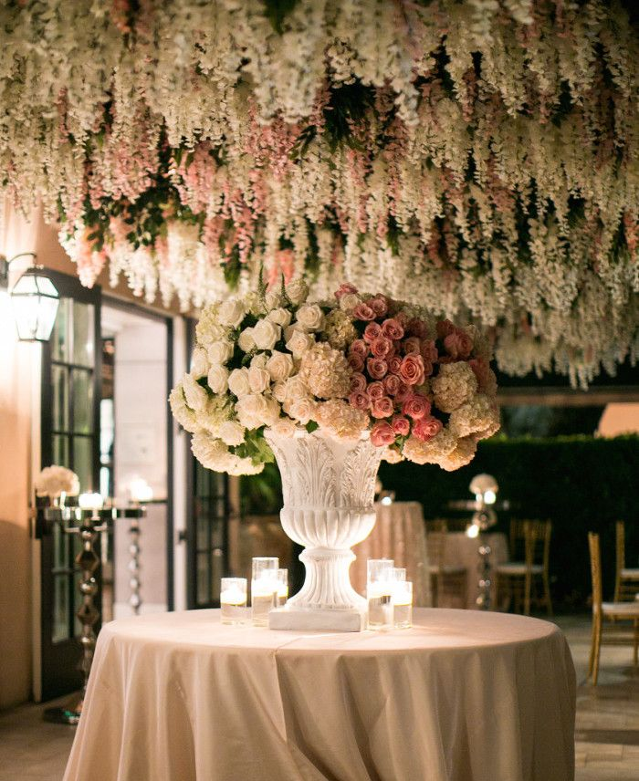 Epic wisteria hanging from the ceiling
