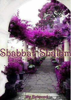 REMEMBER TO KEEP THE SHABBAT HOLY.