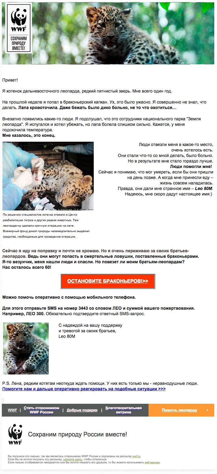 WWF: письмо от имени леопарденка Leo 80M (30/06/15). Самое трогательное письмо в мире: история от лица маленького зверя, который попал в капкан браконьеров -  контент, который не оставит равнодушным никого.