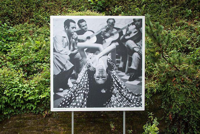 Bretagna festival foto la Gacilly