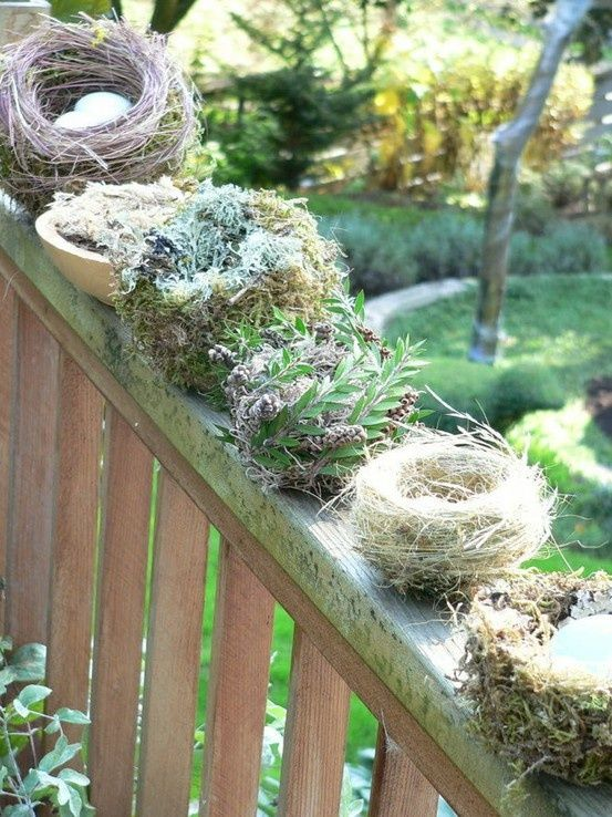 Inspiration Lane : Photo...isn't it against the law to disturb bird nests?
