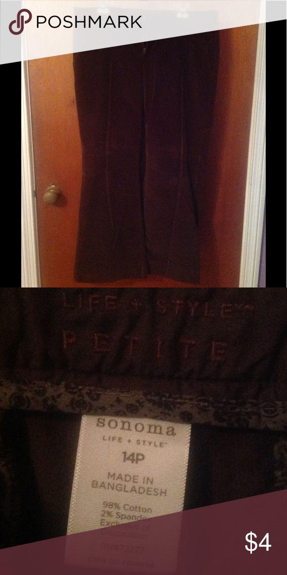 Ladies brown slacks 14P slacks Sonoma Pants Trousers