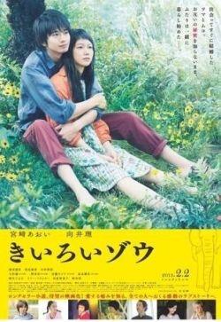 向井理與宮崎葵《黃色大象》公開海報-娛樂新聞-新浪新聞中心