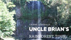 Uncle Brian's Rainforest Tour, Cairns - Lo On The Go